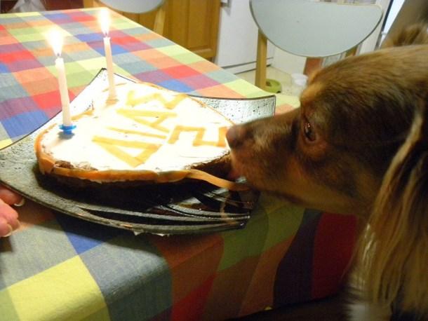 Ο Δίας μόλις έγλυψε την τούρτα του