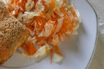 lahano karoto salad with salmon image