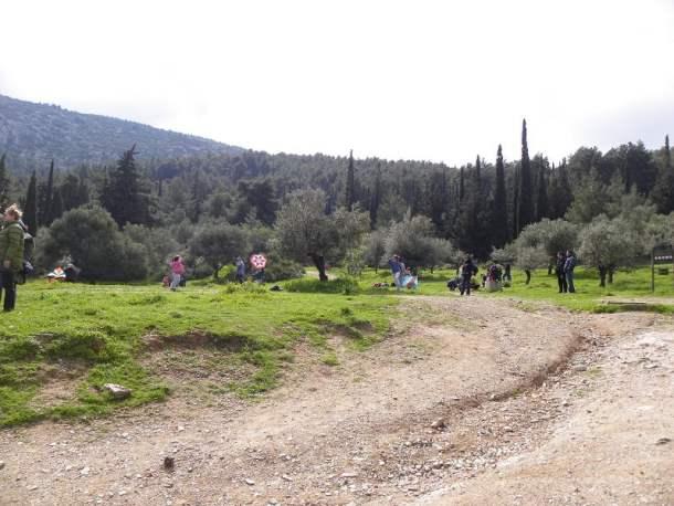 People flying kites image