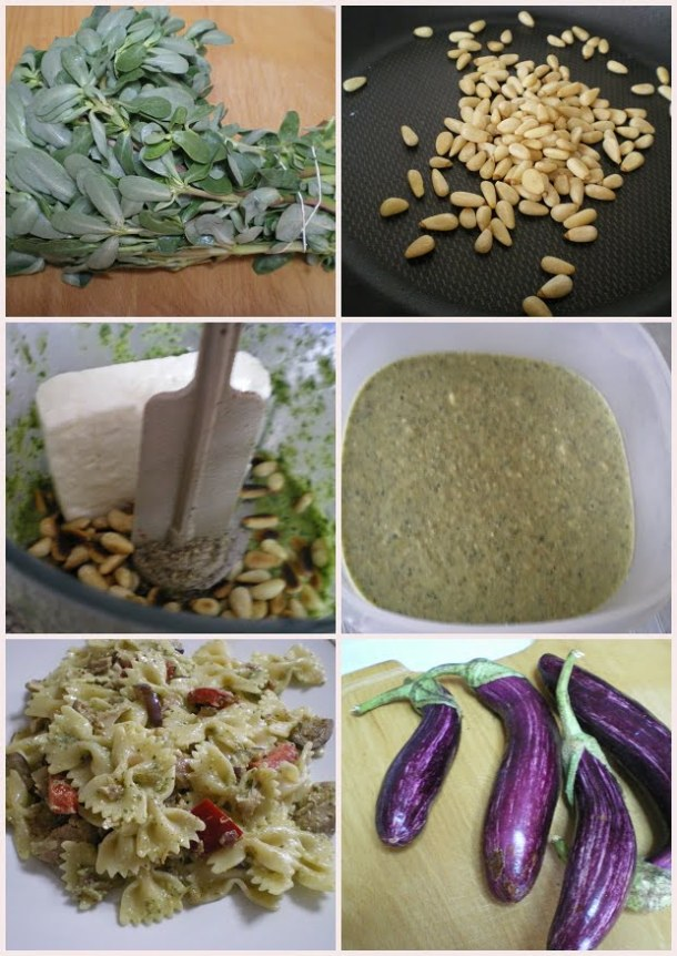 Collage Pesto with purslane and farfalle pasta image