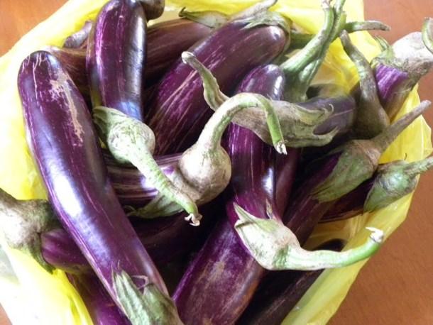 raw vazania eggplants image