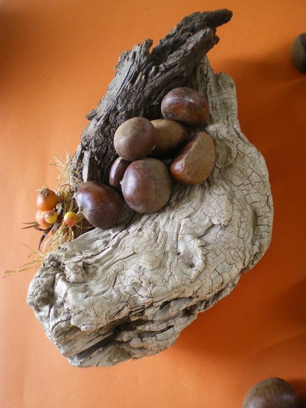 chestnuts on log