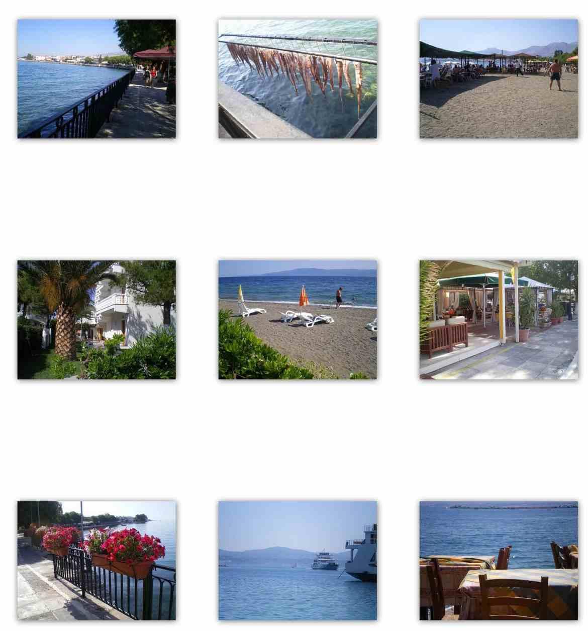 collage Evia