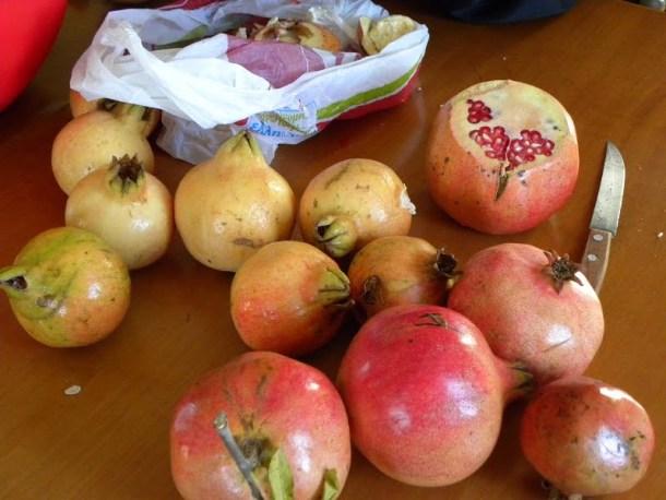 Pomegranate fruit image