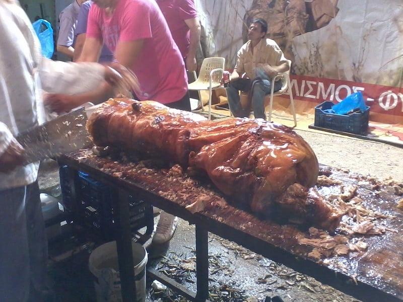 Succling piglet