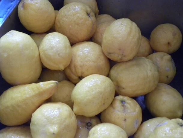 more lemons image