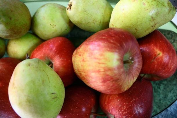 pears-and-apples
