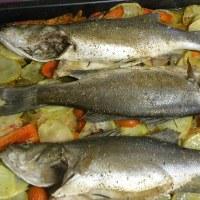 Lavraki Plaki (baked Branzino) on a Bed of Vegetables