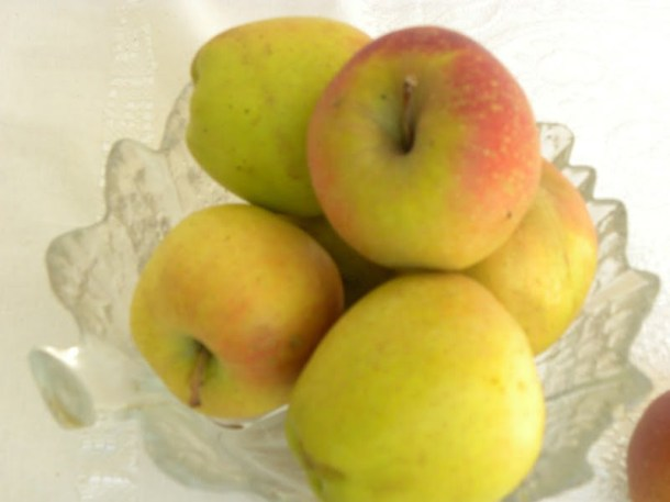 russet apples image