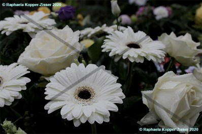 Friedhof_Blumen_1_Raphaela_Kopper-Zisser_2020