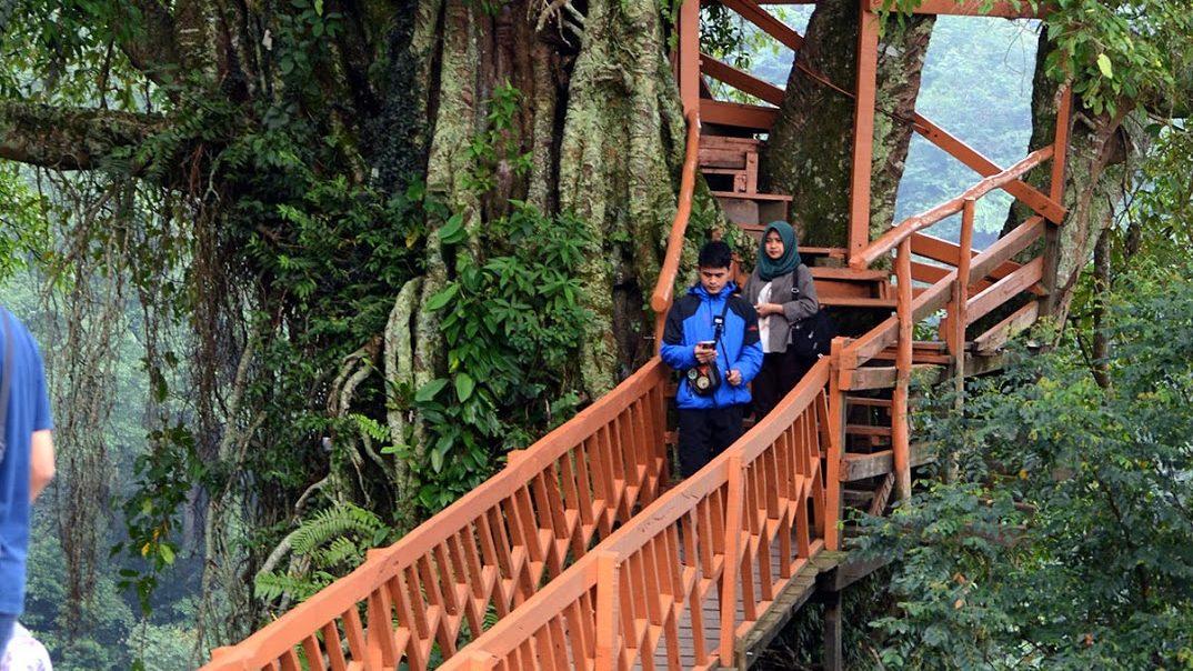 10 Tempat Wisata Di Jonggol Bogor Paling Hits Dan Instagenic Koran Id