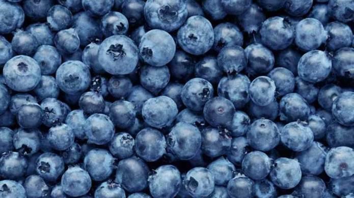 Manfaat Blueberry bagi Kesehatan Tubuh
