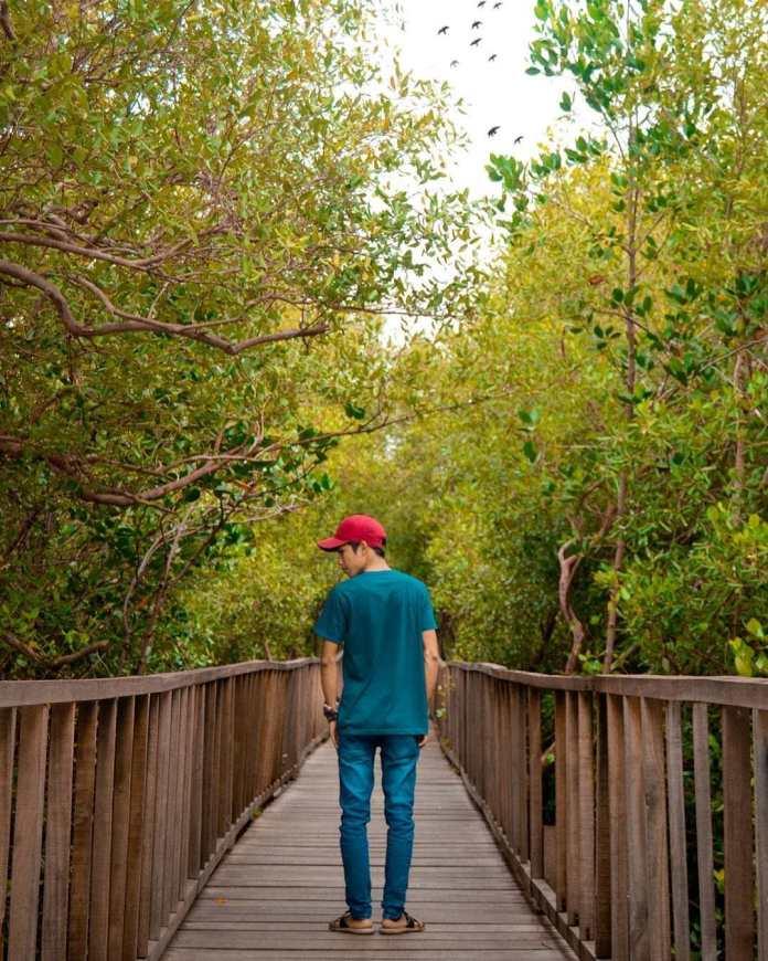 Wisata Banyu Urip Mangrove Center
