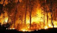 Permalink to Polri Diminta Bertindak Tegas Terhadap Pelaku Pembakaran Hutan dan Lahan