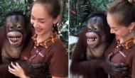 Permalink to Viral, Ning-Ning si Orangutan Meremas Payudara Penjaga Kebun Binatang