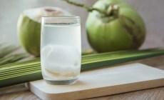 Permalink to Air Kelapa Memang Sehat, Tapi Bahaya Jika Diminum Terlalu Banyak