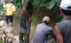 Permalink to Akibat Irigasi Jebol Puluhan Hektar Sawa Terancam Kekeringan
