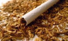 Permalink to Kandungan dan Bahayanya Rokok Kretek untuk Kesehatan