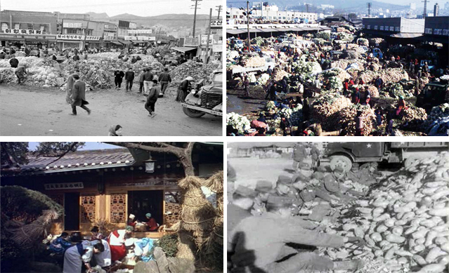 Clockwise from top left: A gimjang market in Ahyeon-dong, Seoul in 1963; a gimjang market in the Yongsan district of Seoul in 1977; soldiers sort through radishes to make gimjang in 1966; a promotional video introduces the proper method for making gimjang (photos courtesy of the National Archives of Korea).