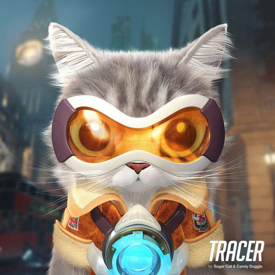 Artist Turns Overwatch Characters Into The Cutest Cats Youve Ever Seen Koreaboo