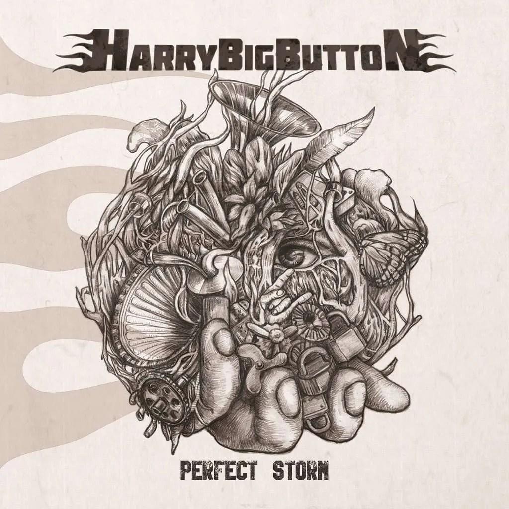 harrybigbutton - perfect storm