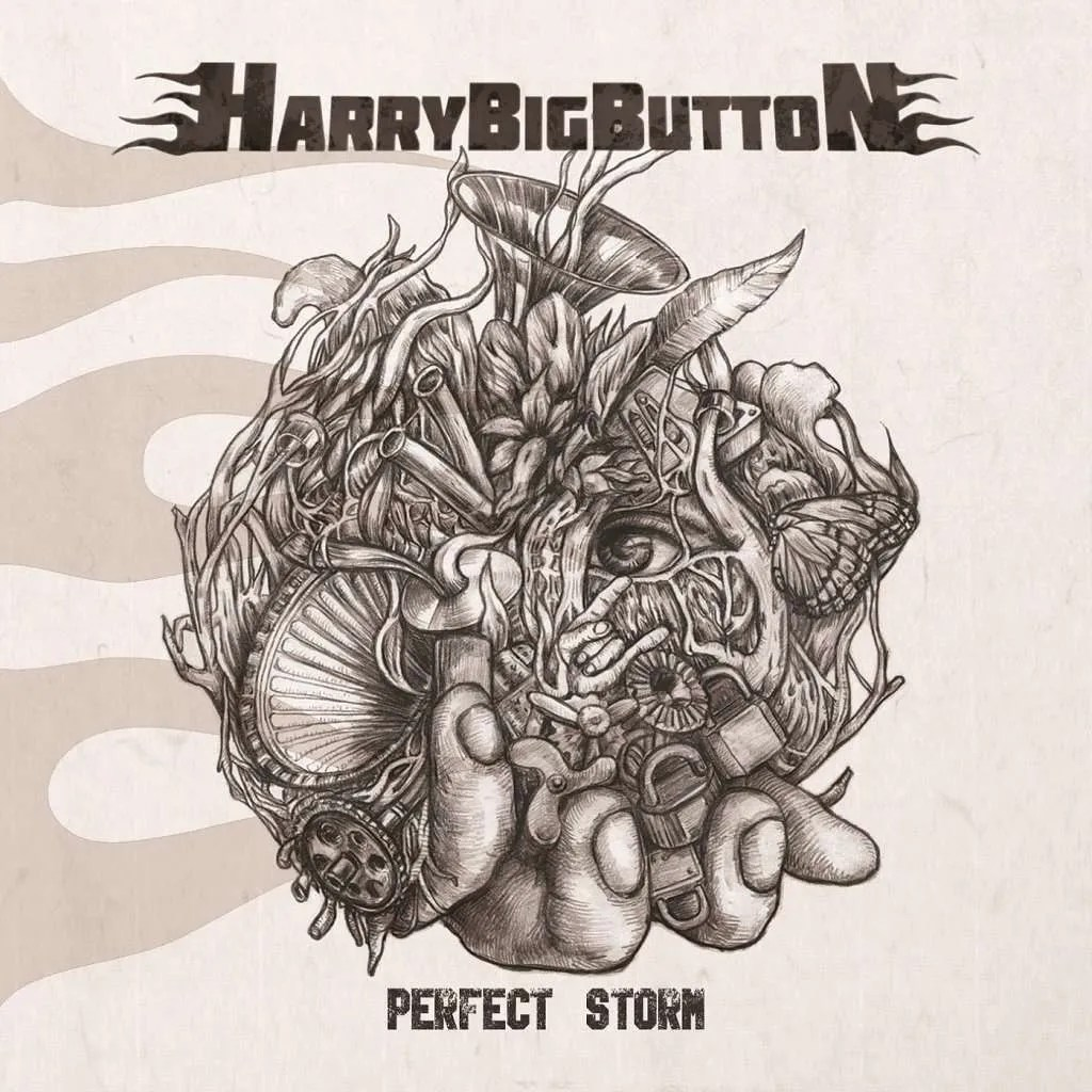 harrybigbutton - perfect storm