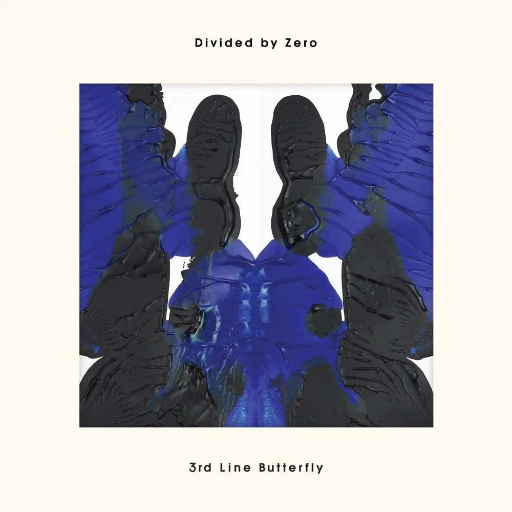 3rd line butterfly divided by zero