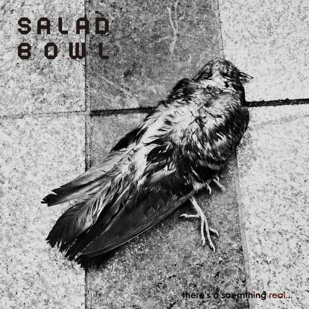 salad bowl there's a something real