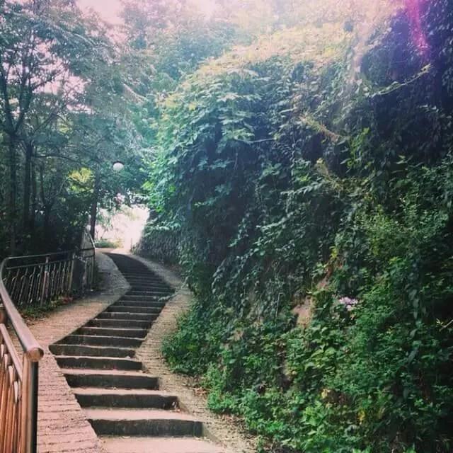 path_coudinky