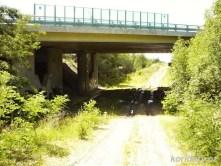Bývalé těleso zrušené trati pod mostem dálnice D3 - pohled směr Sudoměřice.