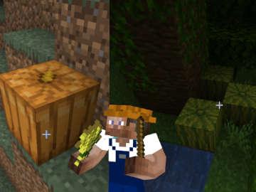 Cómo Encontrar Calabazas y Sandías en Minecraft