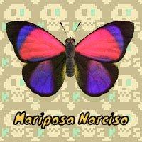 Mariposa Narciso en Animal Crossing New Horizons