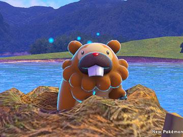 Bidoof de 4 Estrellas en New Pokémon Snap