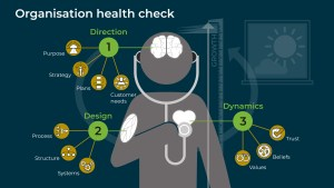 Organisation health check