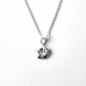 kukkariipus-hopea