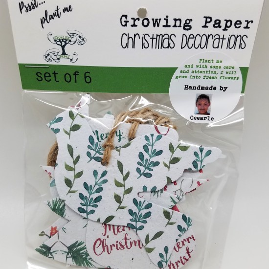 Growing Paper Christmas Ornaments