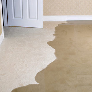 water damage restoration rug cleaning