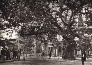 017-Αθήνα-Κηφισιά-1920