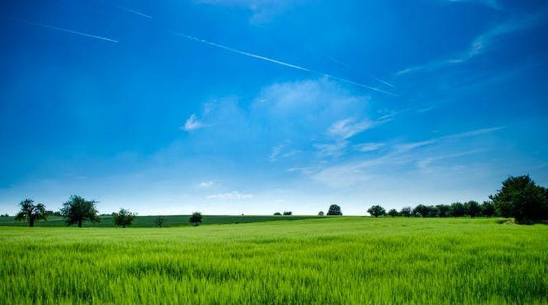 рекультивация земельного участка