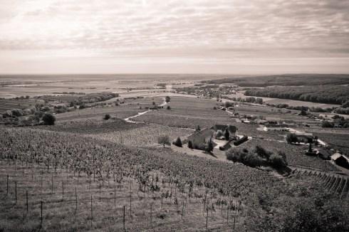 Der Blick vom Eisenberg Richtung Ungarn