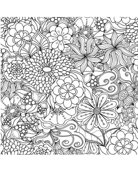 Blumen Malerung Anti Stress Erwachsene Ausmalen