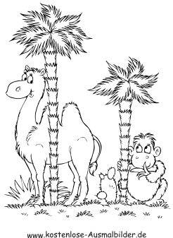Ausmalbilder Kamel Und Affe Tiere Zum Ausmalen