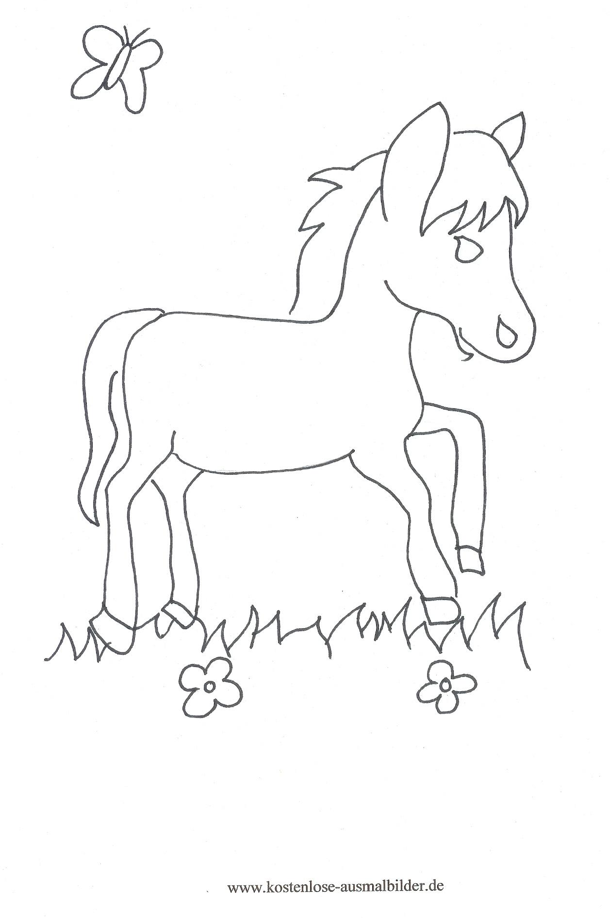 Ausmalbilder Pferd Auf Der Weide Tiere Zum Ausmalen