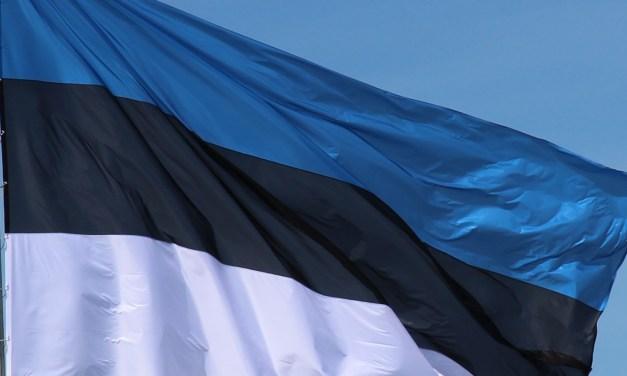 Eesti Vabariigi 99. aastapäeva tähistamine