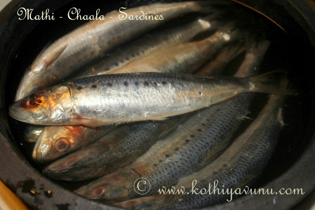 Mathi-Chaala Varuthathu -Mathi Fry -Sardines Fry |kothiyavunu.com
