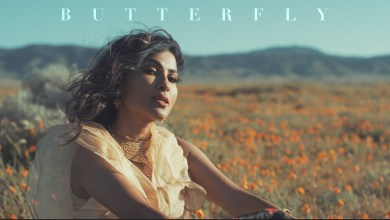 Photo of Vidya Vox – Butterfly lyrics