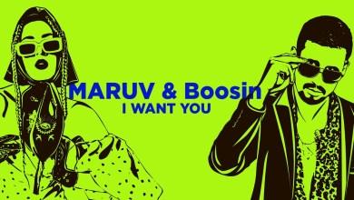 Photo of MARUV & Boosin – I Want You Lyrics