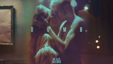 Photo of Olivia Addams – Dumb lyrics