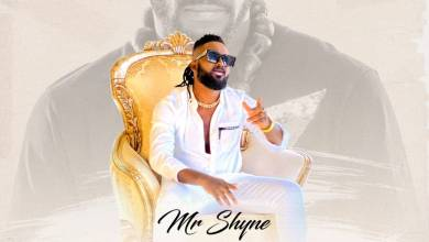 Photo of Mr Shyne – Ange Didier Lyrics