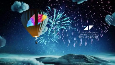 Photo of Avicii Tribute – ONE lyrics